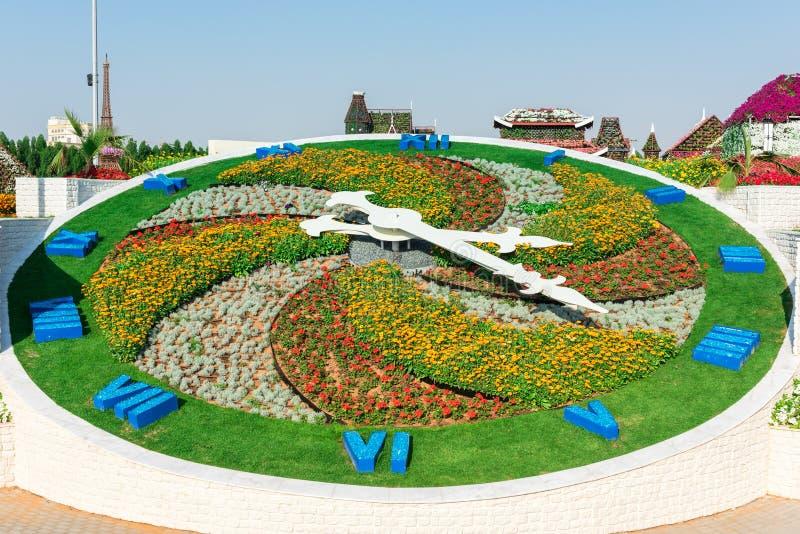 Сад чуда Дубай с над миллионом цветками стоковое фото