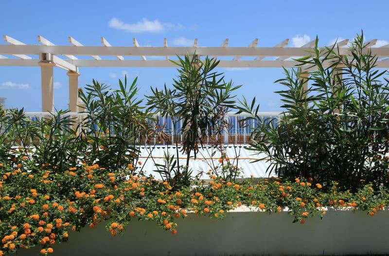Сады на курорте St. Thomas Marriott стоковые изображения