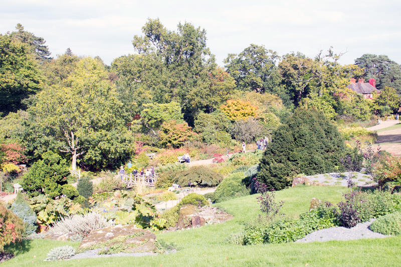 Сады осени стоковая фотография rf