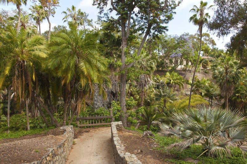 Сады Сан-Диего Калифорния парка бальбоа. стоковые фотографии rf