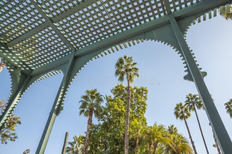 Сады Majorelle в Marrakesh стоковая фотография
