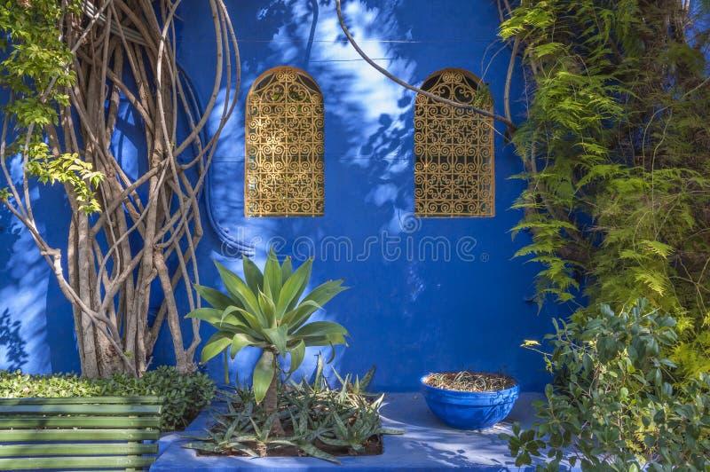 Сады Majorelle в Marrakesh стоковые фотографии rf