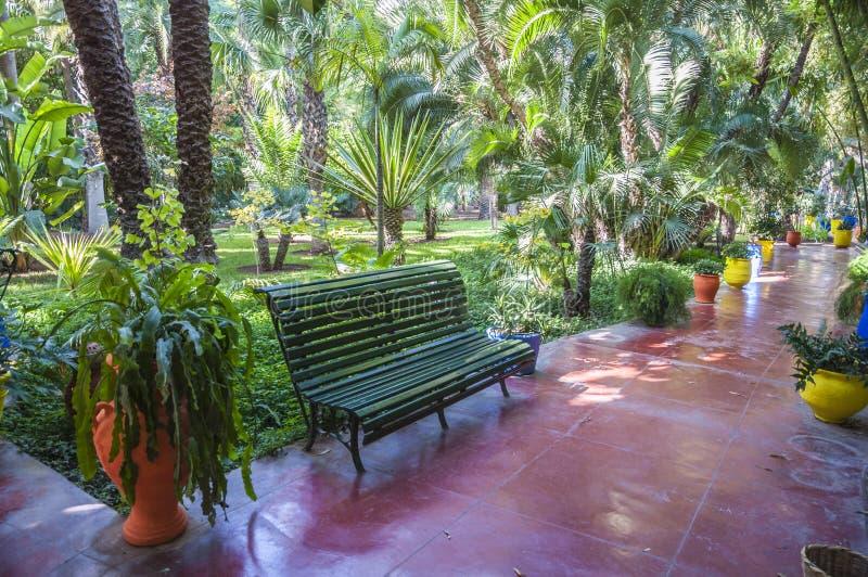 Сады Majorelle в Marrakesh стоковое фото rf