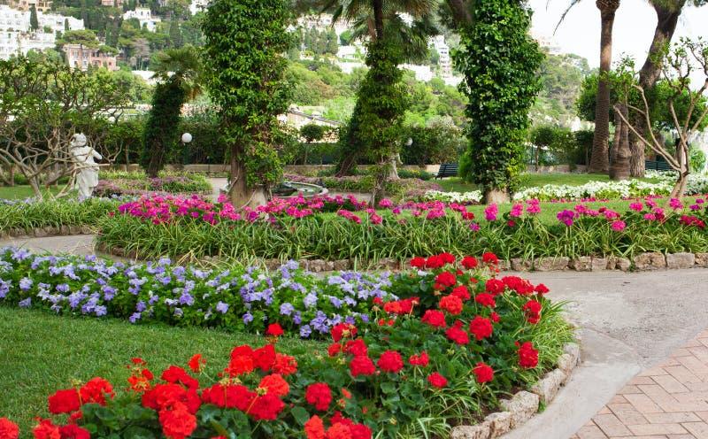 Сад Augustus Капри, Италии стоковые фотографии rf
