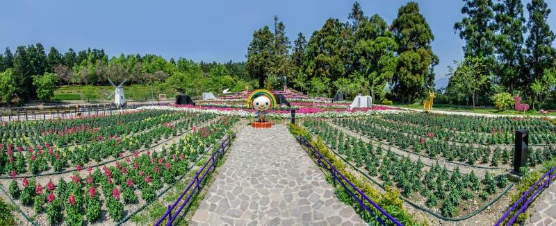 Сад Cingjing малый швейцарский в Nantou, Тайване стоковое изображение rf