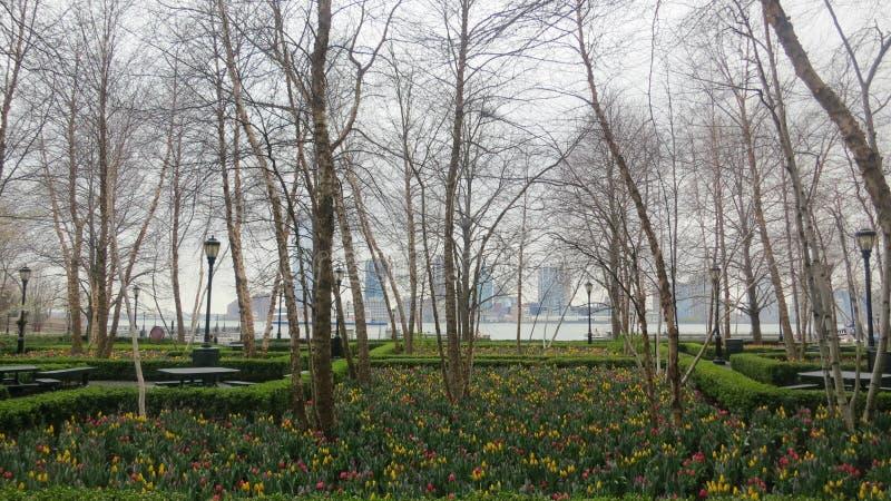 Download Сад Eden стоковое изображение. изображение насчитывающей цветки - 33732365
