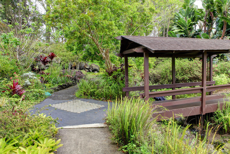 Сад Kula ботанический. Мауи. Гавайи. Покрытый мост. Тропический ландшафт. стоковое фото rf