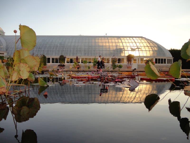 Сад Monets стоковая фотография rf