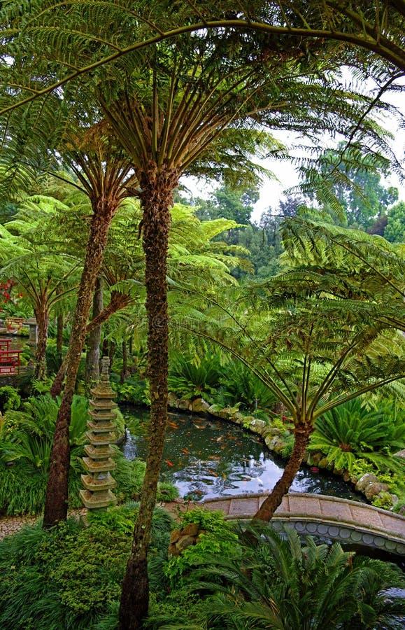 Сад Monte, Фуншал, остров Мадейры, Португалия стоковое фото