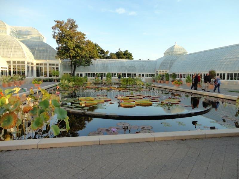Сад @ NYBG 14 Monet стоковая фотография rf