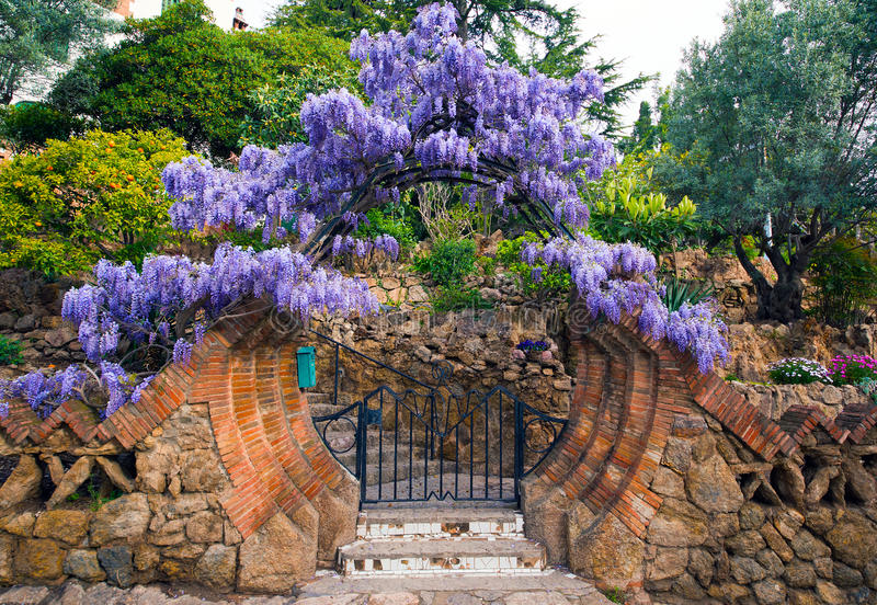 Сад Parc Guell сирени стоковые фотографии rf