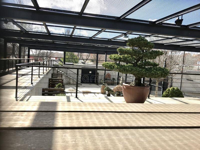Сад parla стоковые фотографии rf