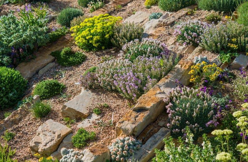 Сад Rockery стоковое изображение