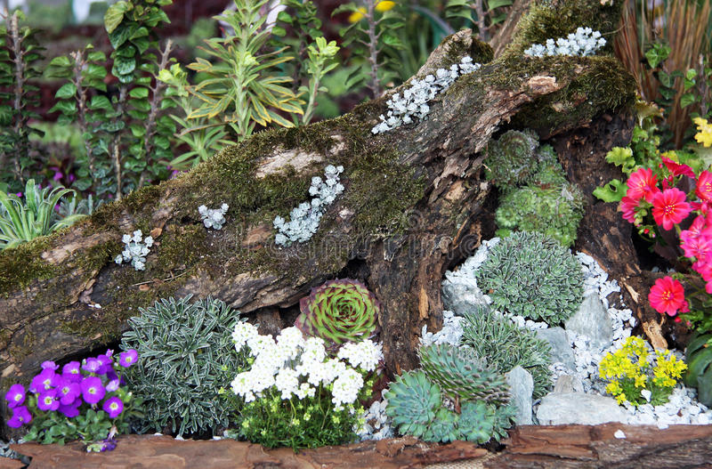 Сад Rockery стоковое фото rf