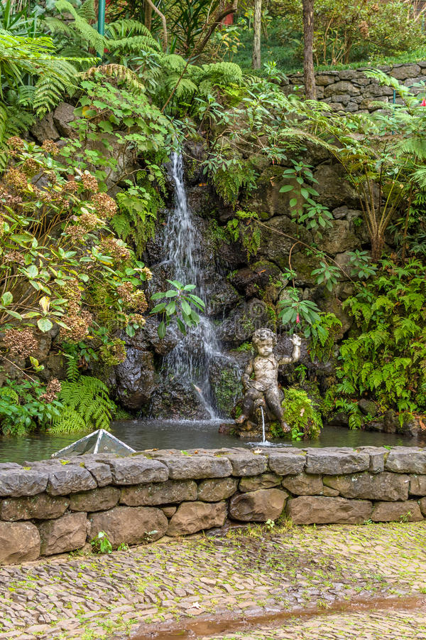 Сад Tropican дворца Monte Фуншал, остров Мадейры, Португалия стоковое фото
