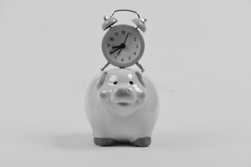 сбережениа дег банка piggy кладя Концепция спасения времени Розовая копилка с секундомером на верхней части стоковая фотография