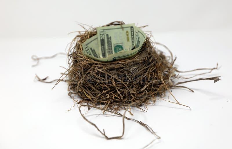 Сбережения яйц из гнезда денег на будущее, концепция вклада стоковое изображение
