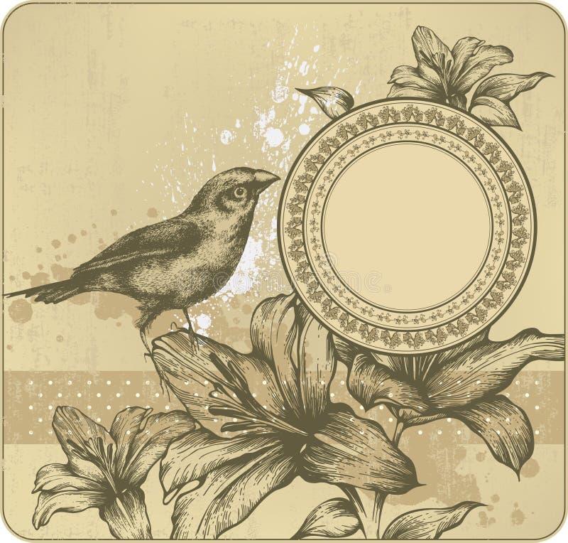 сбор винограда лилий рамки предпосылки зацветая бесплатная иллюстрация