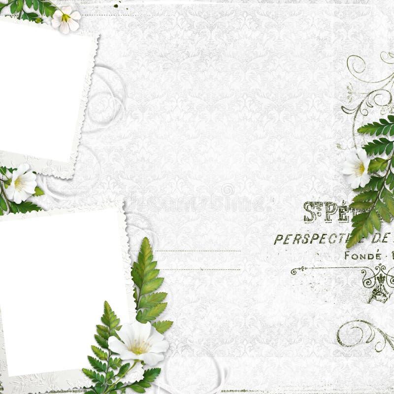 сбор винограда рамки цветков бесплатная иллюстрация