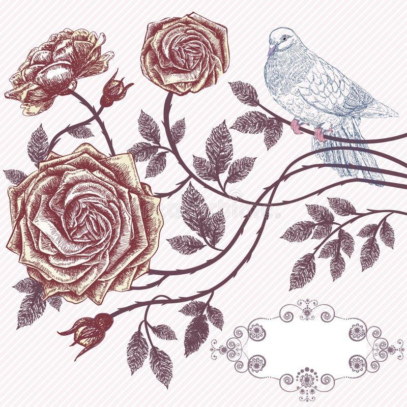 сбор винограда роз карточки флористический романтичный иллюстрация вектора