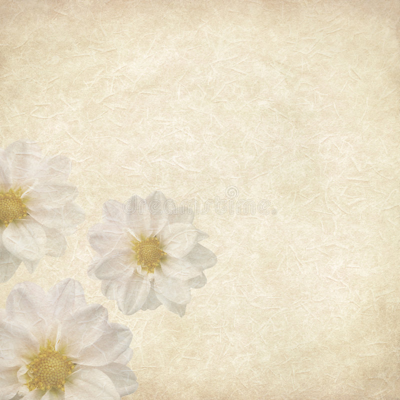 сбор винограда цветка предпосылки иллюстрация вектора
