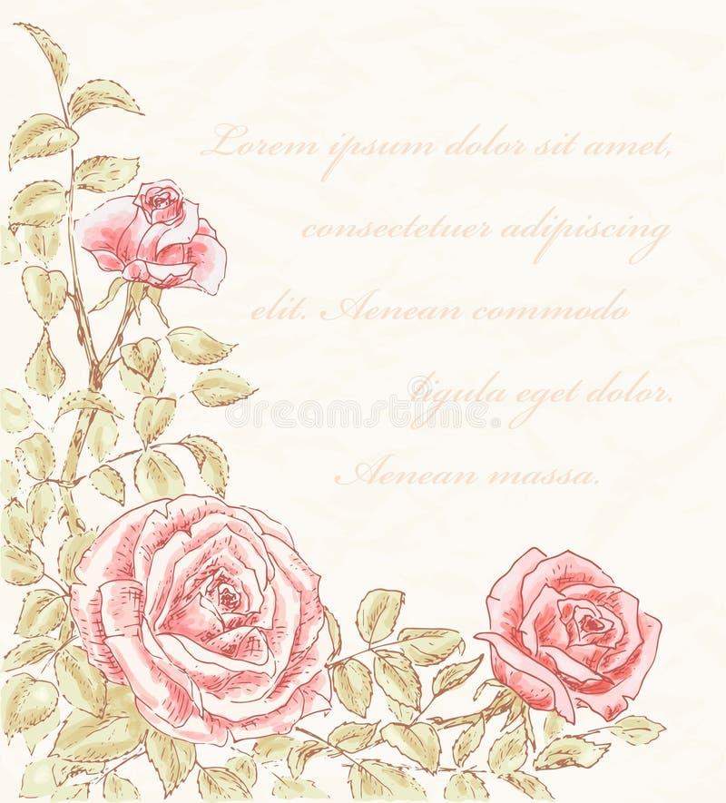 сбор винограда предпосылки розовый бесплатная иллюстрация