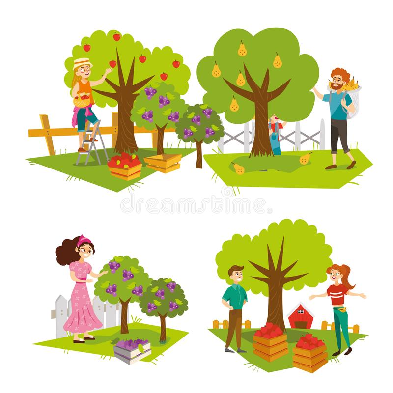 Сбор комплекта плодоовощей плоско красочного бесплатная иллюстрация