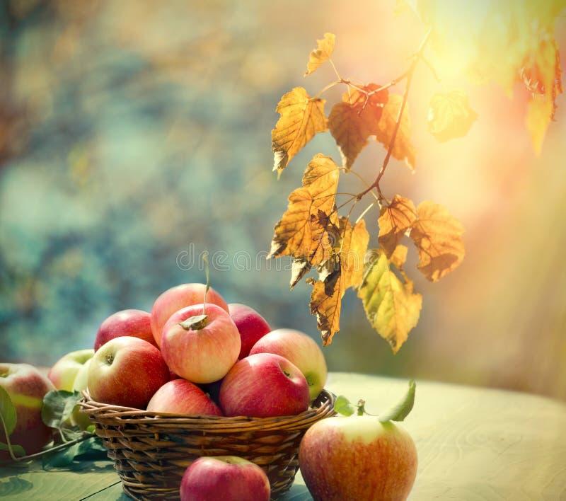 Сбор осени, здоровая еда, здоровое яблоко в плетеной корзине на таблице стоковое фото rf