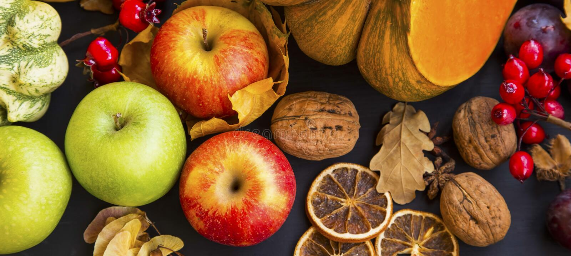Сбор осени с яблоками, тыквами, сквошом, сливами и каштанами стоковые изображения