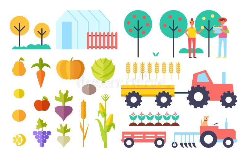 Сбор отростчатой иллюстрации вектора овощей бесплатная иллюстрация