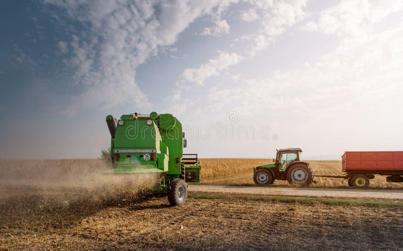 Сбор поля сои с зернокомбайном стоковые изображения