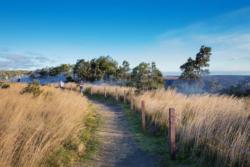 Сбросы пара на национальном парке вулканов стоковая фотография