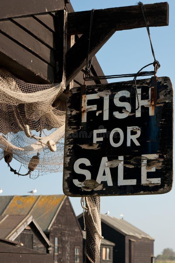 сбывание рыб стоковое изображение