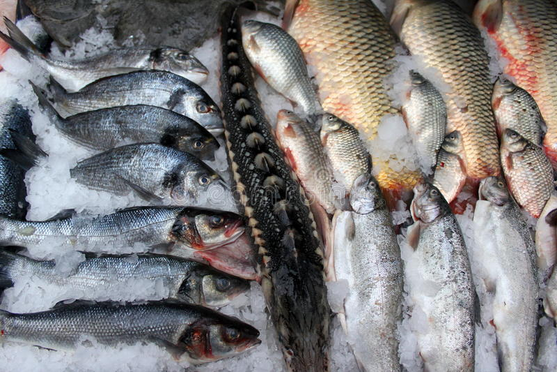 сбывание рыб стоковое фото rf