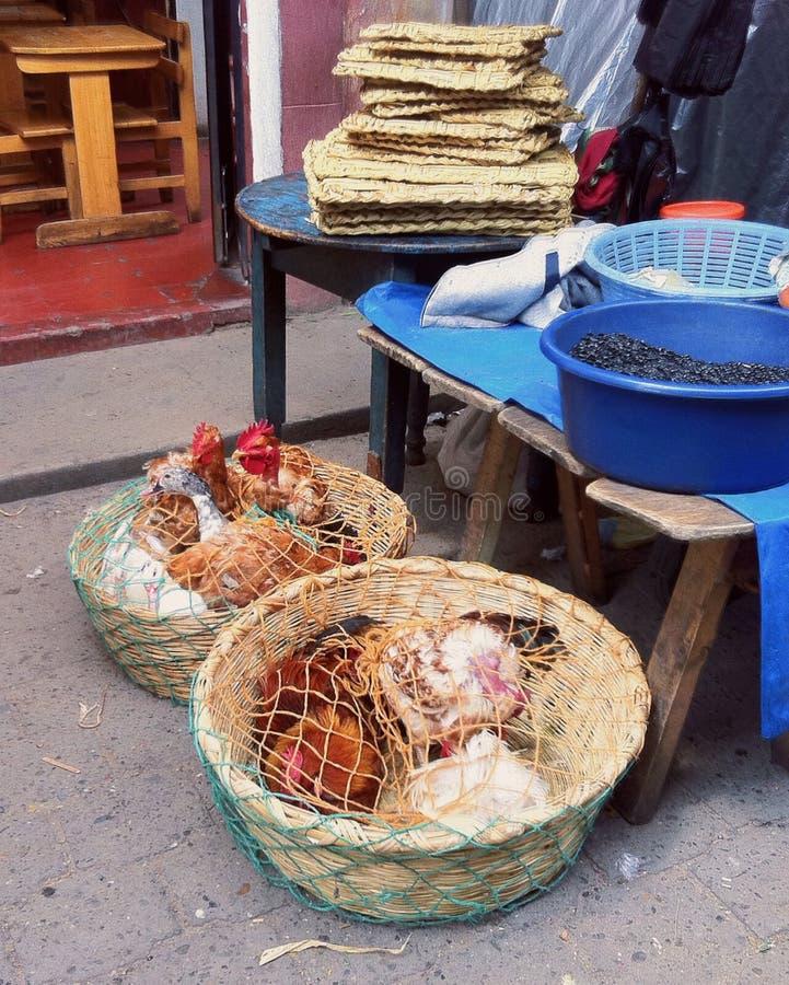 сбывание цыплят стоковое фото rf