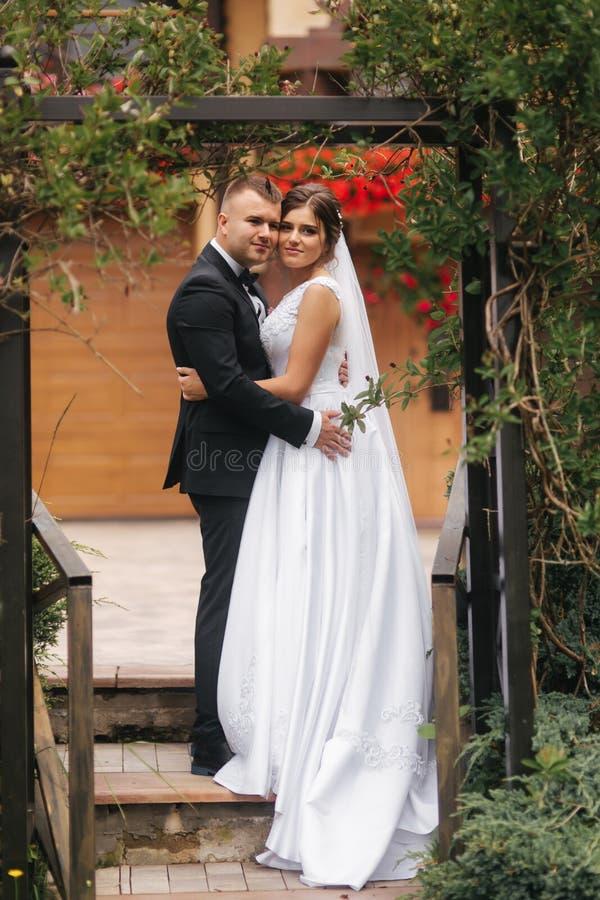Свадебная церемония снаружи как раз поженено Предпосылка гор стоковое изображение rf