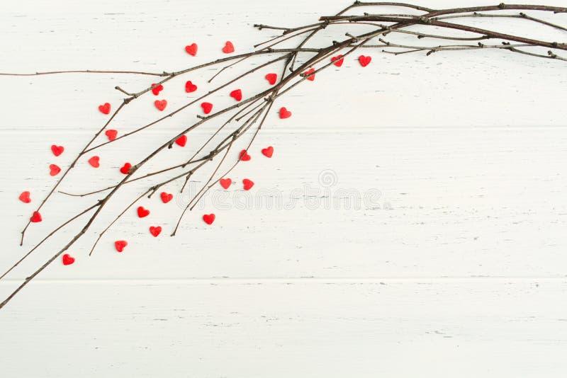 Свадьба и концепция дня Валентайн - ветви дерева с предпосылкой onwhite возлюбленных стоковые изображения rf
