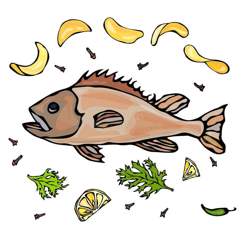 Сваренная рыба с Potatoo откалывает лимон специй трав Иллюстрация морепродуктов вектора реалистическая иллюстрация штока