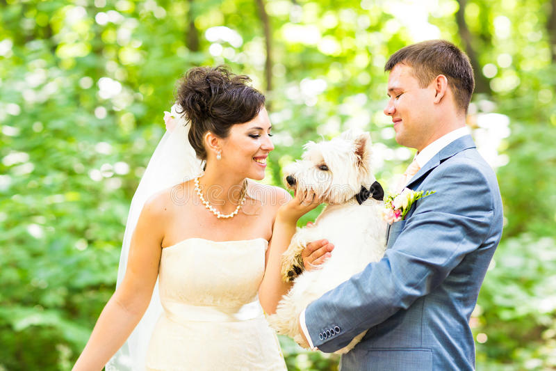 Свадьба жениха и невеста с летом собаки напольным стоковое фото