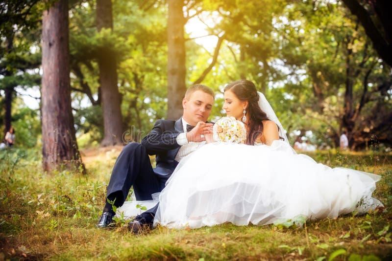 Свадьба снятая жениха и невеста стоковое фото rf
