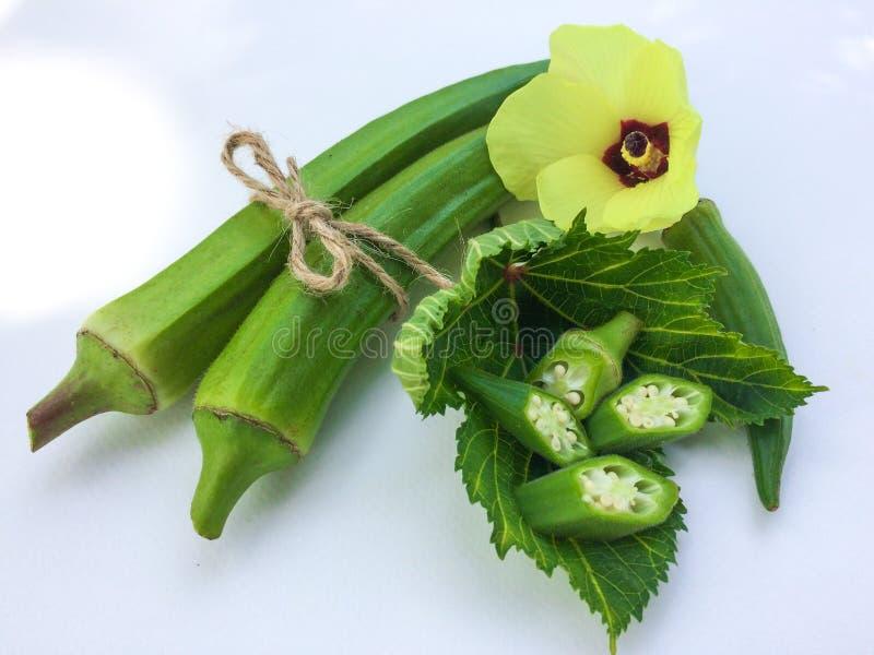 свежая бами на зеленых лист и куске на белой предпосылке стоковое фото