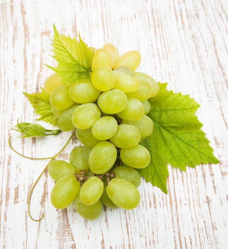 Download свежая виноградина стоковое изображение. изображение насчитывающей абстрактно - 41656333