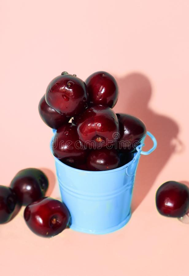 Свежая вишня в голубом ведре на розовой бумажной предпосылке Свежие зрелые вишни стоковое фото