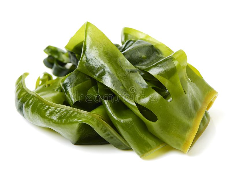 Свежая выдержанная морская водоросль wakame, японская еда стоковое фото