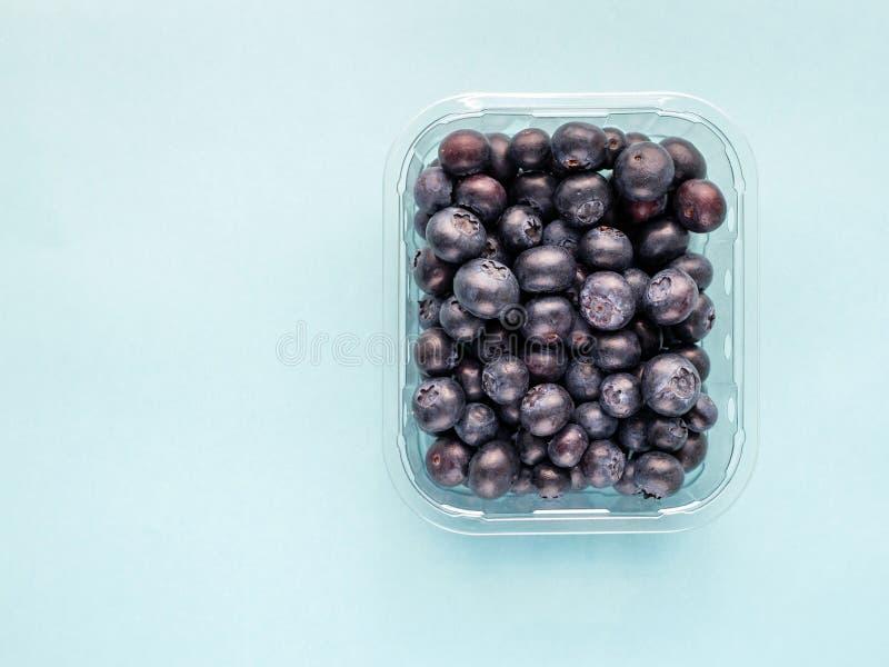 Свежая голубика от леса в пластмасовом контейнере на голубой яркой предпосылке стоковые изображения