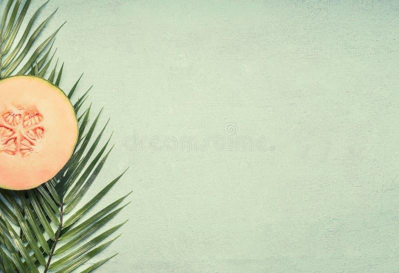 Свежая дыня отрезка на листьях тропических заводов, на голубом деревенском месте предпосылки для положения квартиры текста стоковые изображения