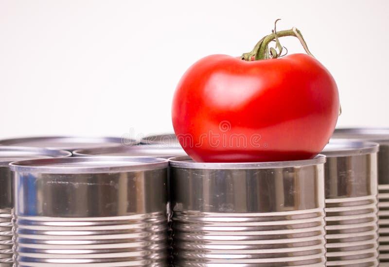 свежая еды залуживанная против стоковые фото