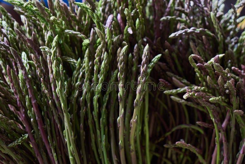 Свежая зеленая предпосылка спаржи, конец-вверх, земледелие и концепци стоковые фото