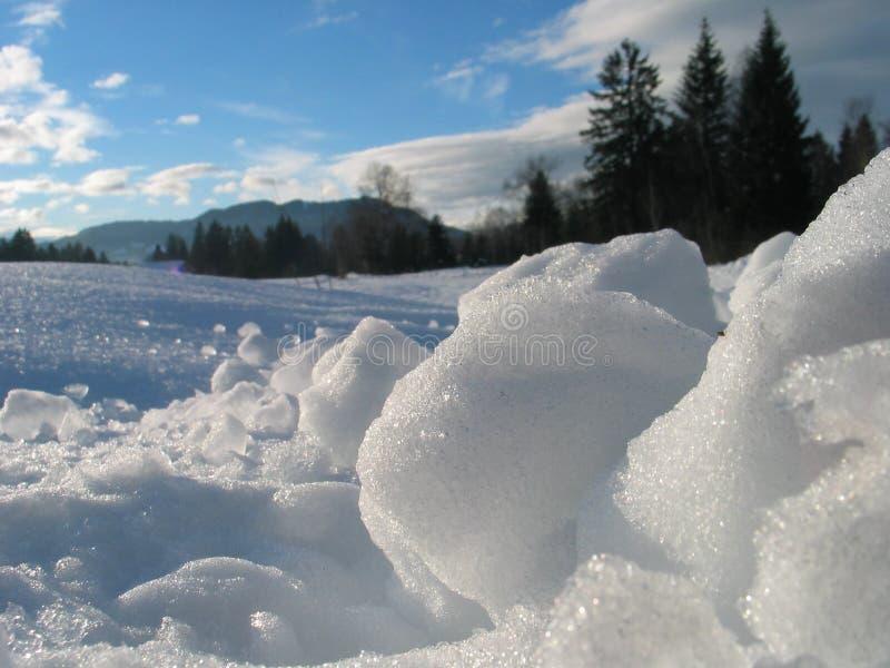 свежая зима ландшафта стоковые изображения
