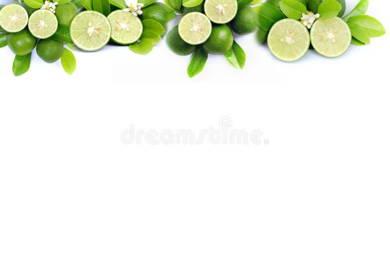 Свежая известка и зеленые рамка и граница лист изолированные на белой предпосылке стоковое фото rf